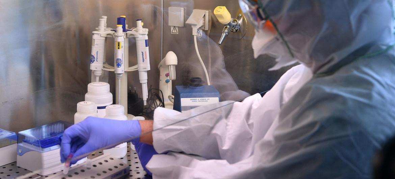 Lucha contra el tiempo para conseguir la vacuna contra el covid 19 foto ONU
